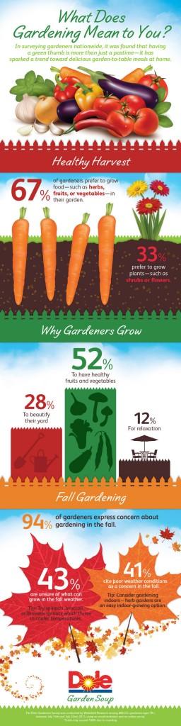 DOLE Garden Soup infographic