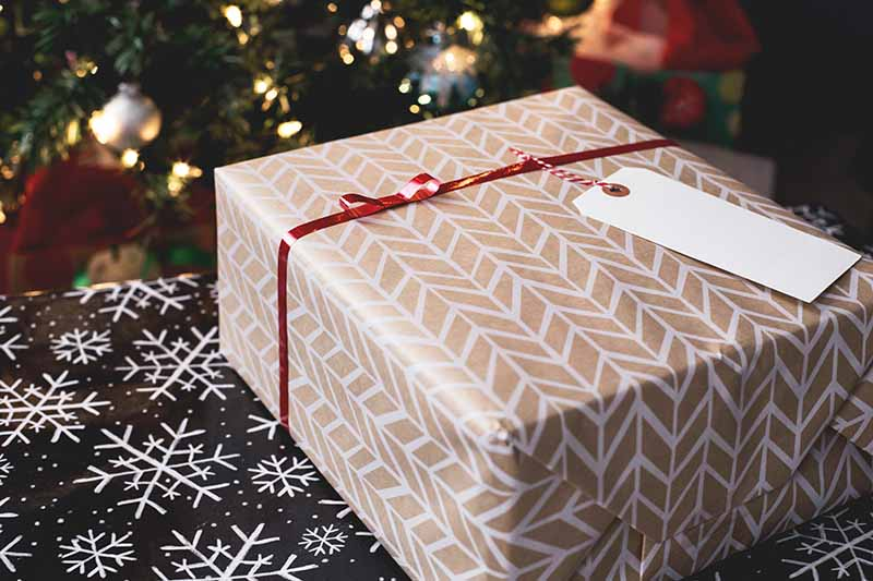 earth-friendly holiday gifting