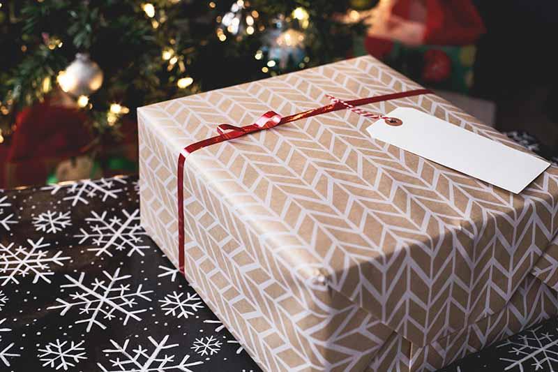 earth-friendly holiday gifting